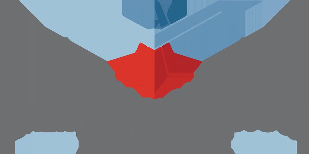 Aci Car Insurance